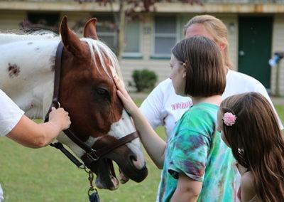 OPC Horses 550